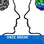 onze brein